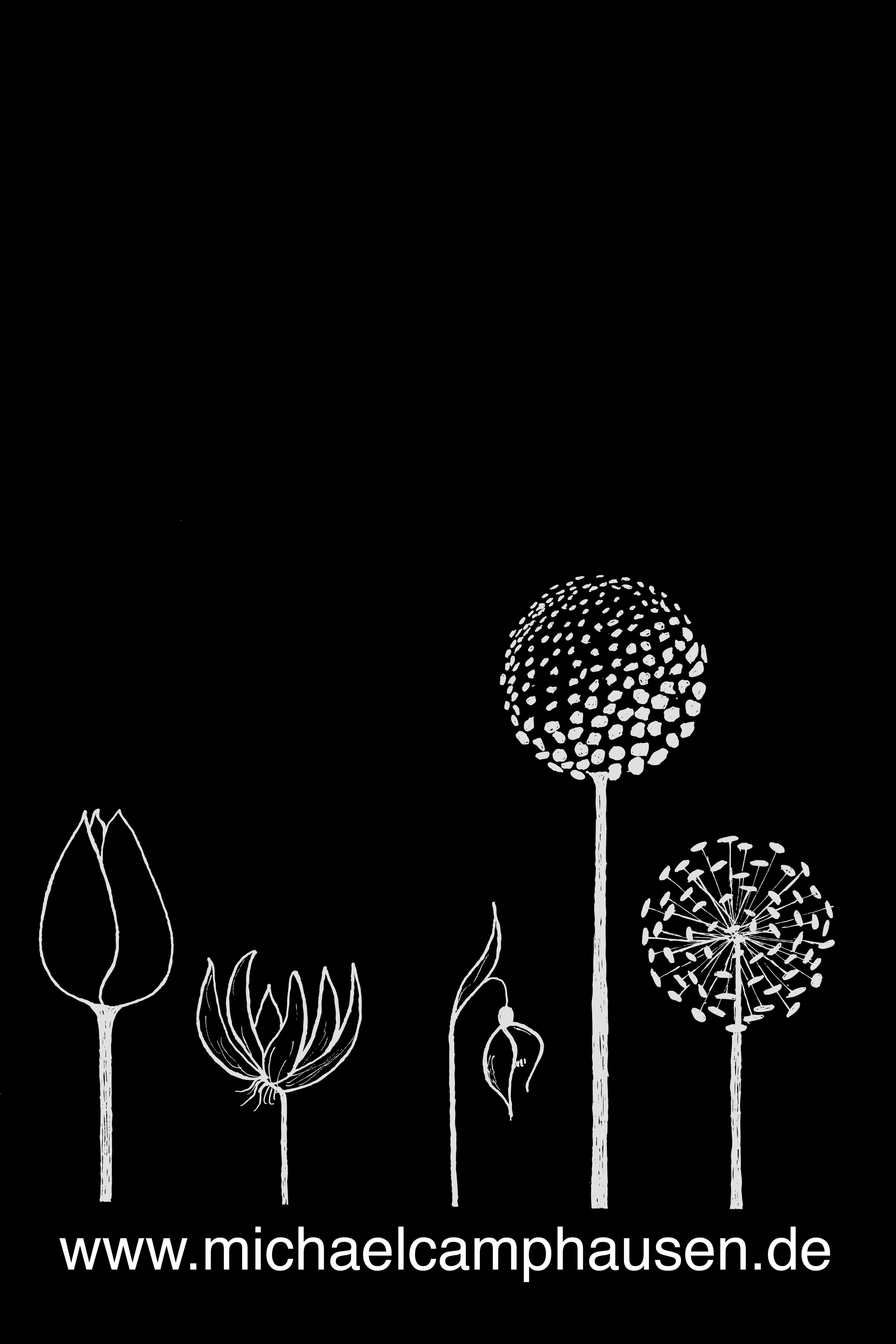Galanthus ' Nerissa '